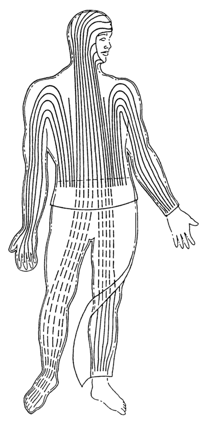 Temperature regulation system for the human body using heat pipes (Faghri, 1993b).