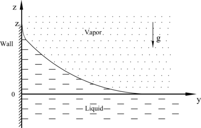 Shape of the liquid-vapor interface near a vertical wall