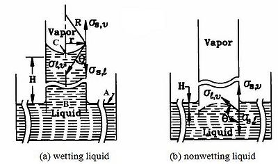 Figure 2 Capillary phenomenon in an open tube (Faghri, 1995; Reproduced by permission of Routledge/Taylor & Francis Group, LLC).